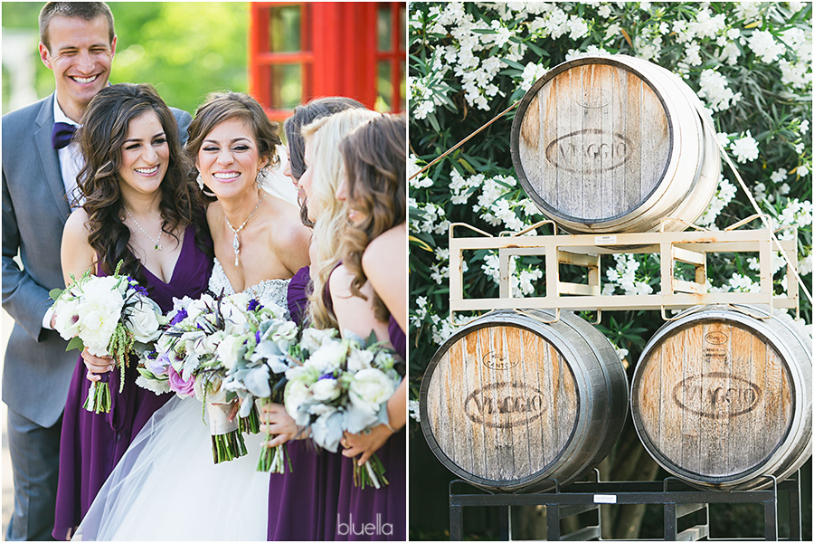 california winery wedding photographer